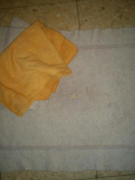 floor-rags-1