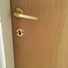wood-door-with-handle